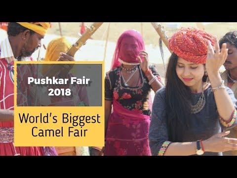 Pushkar Mela 2018 - Pushkar Mela Video - Pushkar Camel Fair