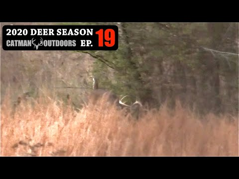 Bucks are on the move! Hunting with Limited Time – 2020 Deer Season Ep 19