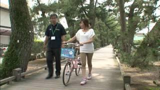 しずおか観光「レンタサイクルの旅」(三保半島周辺)