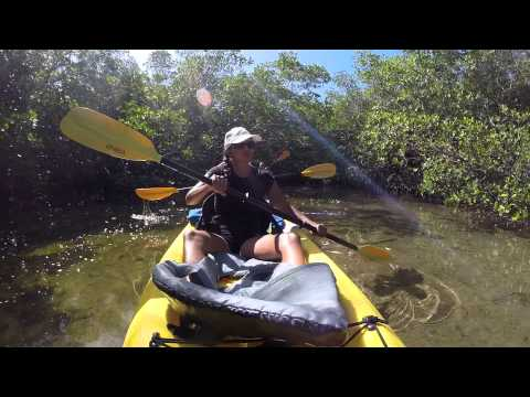 Florida Keys Kayaking, Tavernier Creek