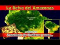 Video de Orellana