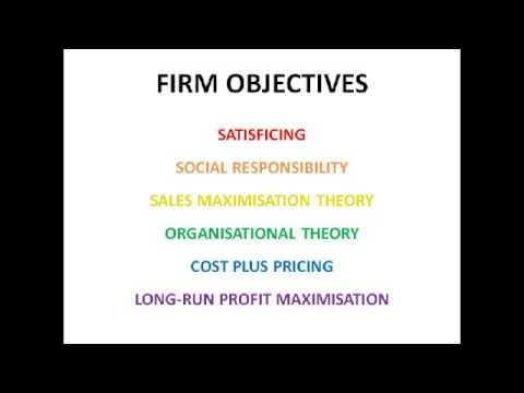 The Objectives of Firms - Economics A2 Level Unit 3