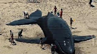 """Хэнкок выкидывает кита в море. Фильм """"Хэнкок"""". 2008 год"""
