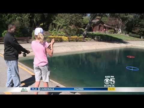 pool 12 flytring test