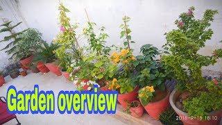Tuin Overzicht in de maand september