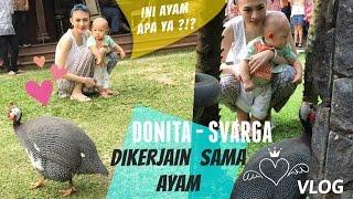 AYAM BANGKOK | donita dan adi nugroho - baby svarga vlog Berita artis hari ini