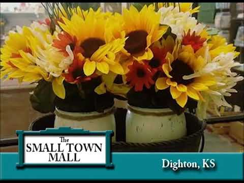 Dighton Kansas's Dighton Small Town Mall on Our Story's the Celebrities