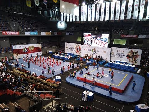 OPENING CEREMONY WUSHU ROAD TO ASIAN GAMES 2018, JAKARTA 26 OKTOBER 2017
