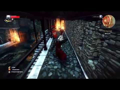 Witcher  Alchemist Build Leveling