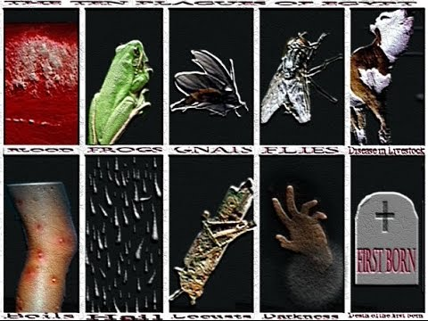 ABC: Exodus - The Plagues