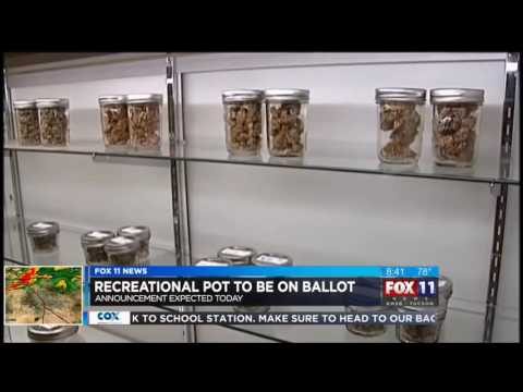 Pot Initiative Qualifies for the General Election Ballot