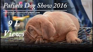 Patiala Dog Show 2016