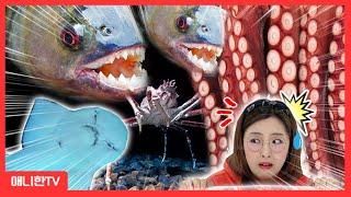 세상에서 가장 무서운 물속 동물을 찾아라! 아쿠아리움 …