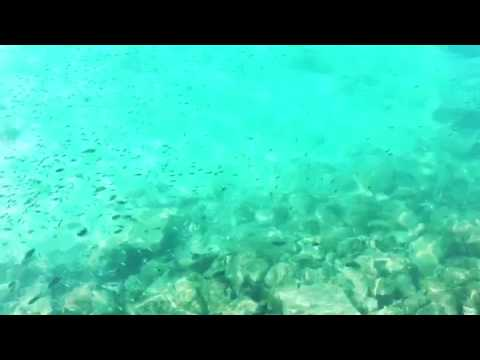 Palau clear water ❤️❤️❤️
