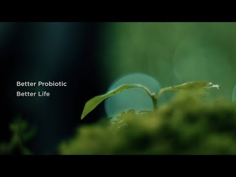 Better Probiotic Better Life-SYNBIOTECH INC.