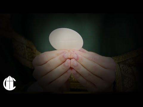 Catholic Sunday Mass: 1/19/20 | Second Sunday in Ordinary Time