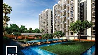 Marvel Izara NIBM Pune - Project Walkthrough