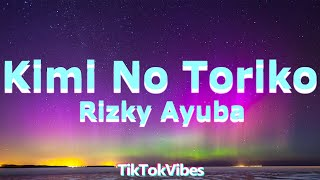 Gambar cover Kimi no Toriko Song - Rizky Ayuba (Lyric/Lyric Video)