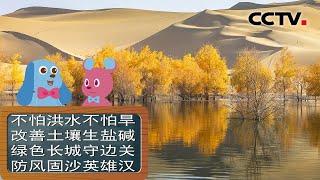 [智慧树]道哥和摩尔:胡杨|CCTV少儿