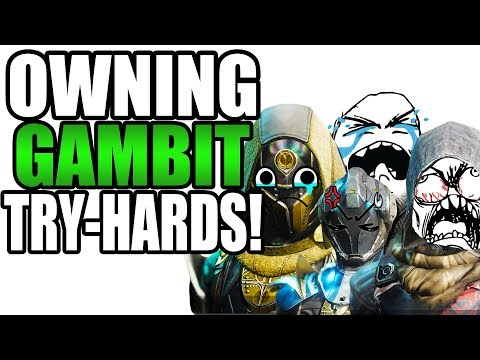 OWNING TRYHARDS IN GAMBIT! | Funny Destiny 2 Black Armory Gameplay! thumbnail