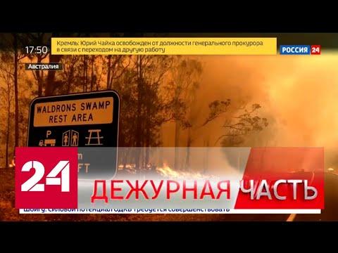 """Вести. """"Дежурная часть"""" от 20 января 2020 года (17:30) - Россия 24"""
