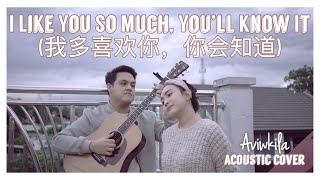 Download lagu I LIKE YOU SO MUCH, YOU'LL KNOW IT (我多喜欢你,你会知道) - A LOVE SO BEAUTIFUL OST (ENGLISH COVER)