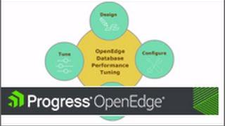 Designing an OpenEdge Database for Performance