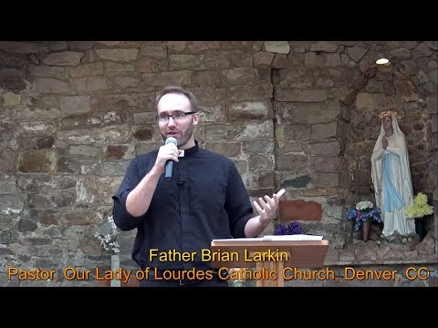 "CATHOLIC REFLECTIONS ON THE PROTESTANT REFORMATION: ""The Story"" By Father Brian Larkin"