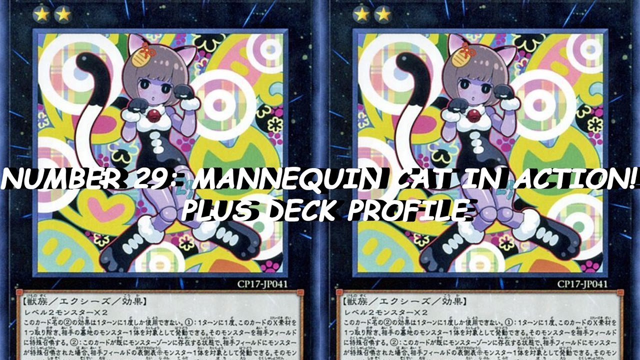NUMBER 29: MANNEQUIN CAT IN ACTION! PLUS DECK PROFILE ...