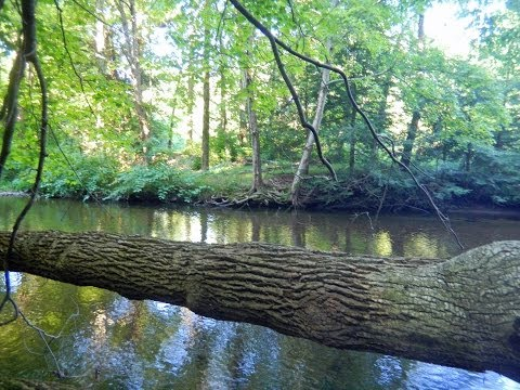 Huge 7.74 Acre Lot For Sale with Trout Stream, Pocono Mt. PA, RVs OK!
