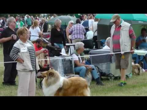 Bakewell Show 2014 Part 1