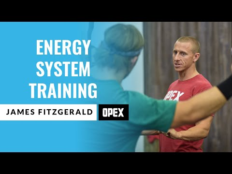 Energy Systems Training How To Train and Improve With James Fitzgerald
