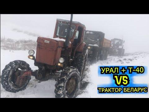 Трактор Беларусь против УРАЛ и Т 40   КТО ПОБЕДИТЬ?