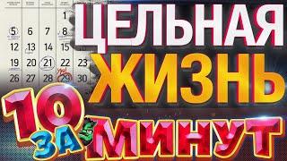 Цельная жизнь за 10 минут от Евгения Вольнова