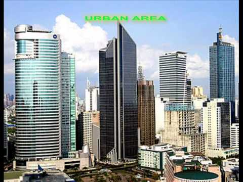 DIFFERENCE BETWEEN RURAL AREA AND URBAN AREA