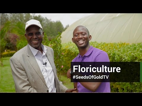 Floriculture - Seeds Of Gold TV Season 1 Episode 4 | 2015