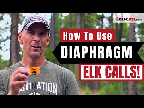 Learn to Use Diaphragm Elk Calls