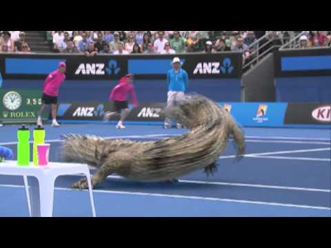 The Optus Australian Open Replay