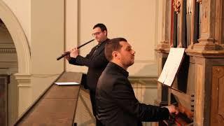 Giovanni Battista Fontana - Sonata Seconda - Organo Cipri - Monte San Giovanni 1578