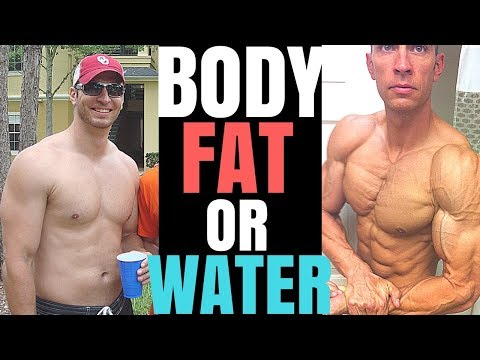 Is It Body Fat or Water?