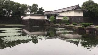 Japan Tour 2016 | Day 1 | Imperial Palace & Palace Hotel Tokyo
