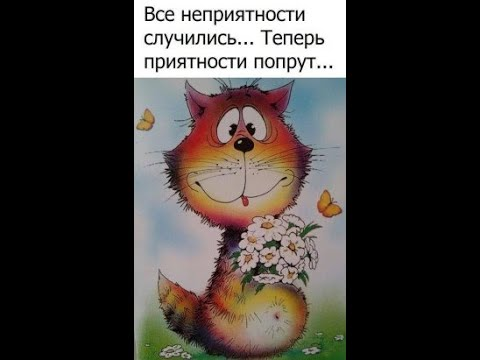 GS4489 Он хочет в Россию...