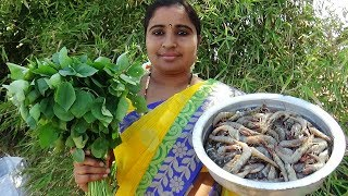 Video Yummy Gongura Prawns Curry ( Sorrel Leaves) Cooking In My Village- South Indian Shrimp Sorrel Recipe download MP3, 3GP, MP4, WEBM, AVI, FLV Agustus 2018