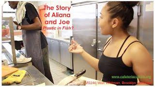 The Story of Aliana and Joe - plastic in fish?