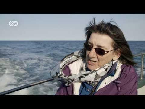 Documentales en Español -GRANDES VIAJES EN TREN : CUBA