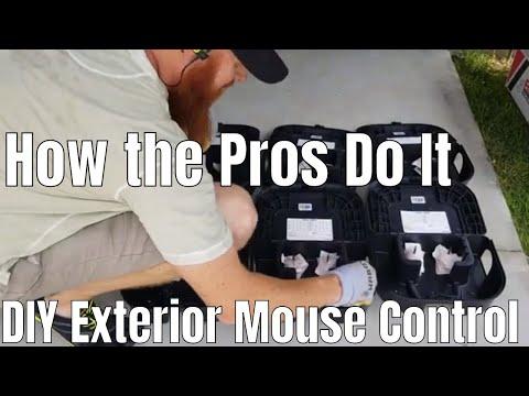 DIY How to exterior mouse control . Final softbait, repellex, bell labs provoke attractant, ez klean
