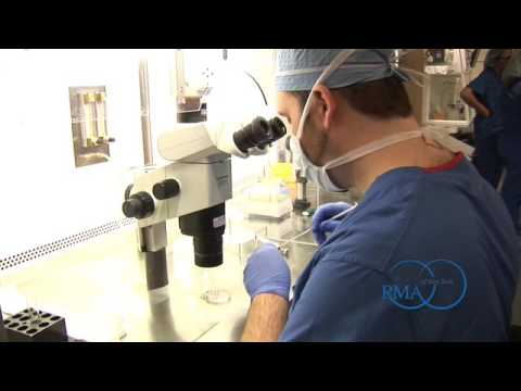 Download Exclusive Tour: Inside the IVF Laboratory at RMA of New York