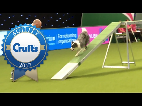 Agility - Large Team Final (Part 1)   Crufts 2017