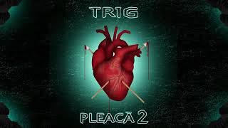 TRIG-PLEACA 2(melodie stearsa)