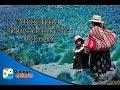 Pobreza e Infancia: Eficiencia en la gestión y en el uso de recursos